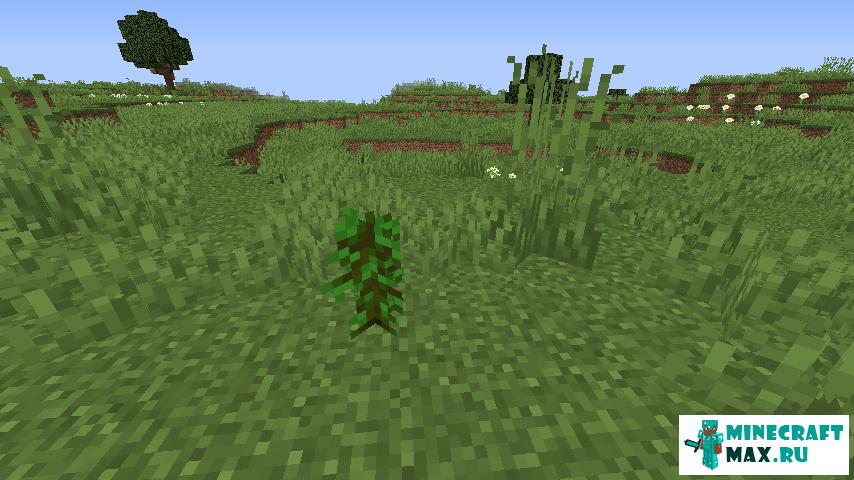 как вырастить слизневое дерево в майнкрафт